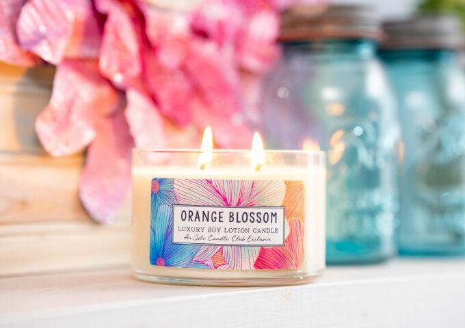 isle Orange Blossom (August 2021)